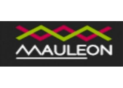 L'espadrille basque label Mauléon